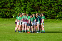20190619 - ORaghallaighs Oliver Plunketts V Clan na nGael (Hollywood Developments Inter C'Ship Group 1)-6421