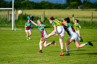 20190619 - ORaghallaighs Oliver Plunketts V Clan na nGael (Hollywood Developments Inter C'Ship Group 1)-6436