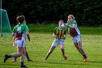 20190619 - ORaghallaighs Oliver Plunketts V Clan na nGael (Hollywood Developments Inter C'Ship Group 1)-6461