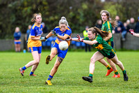 20191110-15082421 - Kilkerley Emmets v Cooley Kickhams (Div 3 League Final)