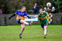 20191110-15092566 - Kilkerley Emmets v Cooley Kickhams (Div 3 League Final)