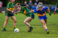 20191110-15095531 - Kilkerley Emmets v Cooley Kickhams (Div 3 League Final)