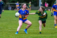 20191110-15095982 - Kilkerley Emmets v Cooley Kickhams (Div 3 League Final)