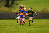 20191110-15114131 - Kilkerley Emmets v Cooley Kickhams (Div 3 League Final)