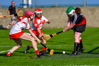 20200915 - St. Brides vs St. Kevins Louth Senior Camogie League Cup final}-26