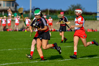 20200915 - St. Brides vs St. Kevins Louth Senior Camogie League Cup final}-32