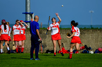 20200915 - St. Brides vs St. Kevins Louth Senior Camogie League Cup final}-7